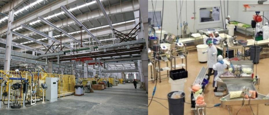 deratizare fabrici industria alimentara productie